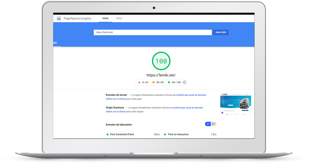 Score googleSpeed Insights FEMIK 68 à 100/100